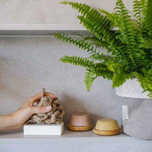 esponja natural de yute en al mano junto a champú sólido y planta helecho boston